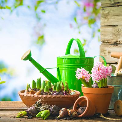 Giardinaggio e Agricoltura